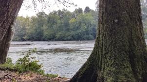Chattahoochee River - Alpharetta, Georgia